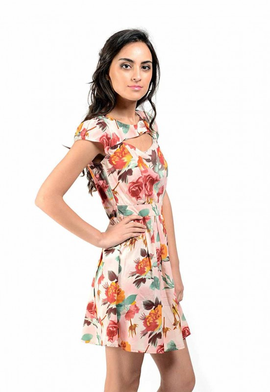 Beautiful Floral Print Short Dress By Shipgig