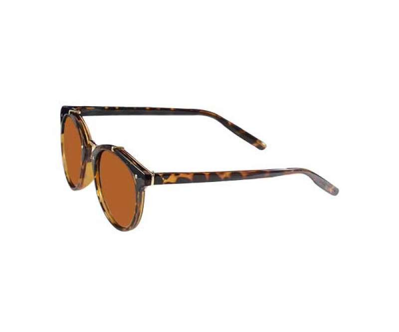 Clubmaster Shape Sunglasses