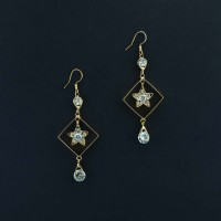 Shimmering Studded Dangler Earrings